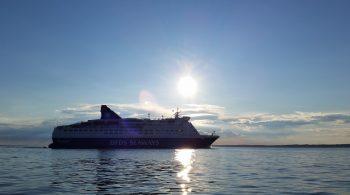 Din Fiskeguide - DFDS i solen